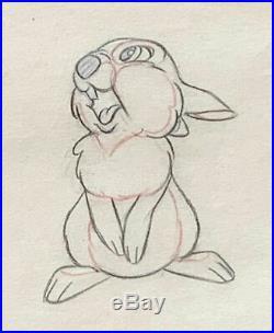 1942 Rare Walt Disney Bambi Thumper Original Production Animation Drawing Cel